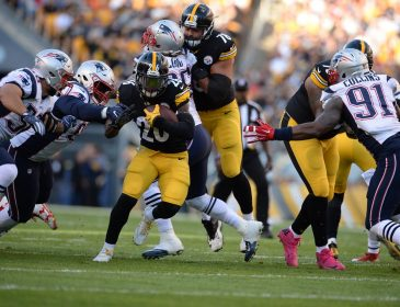 Injury Riddled Steelers lose a Close One to the Patriots