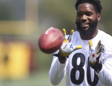 Steelers Cut TE Ladarius Green